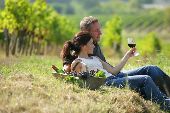 Basque DMC´s Catar vino